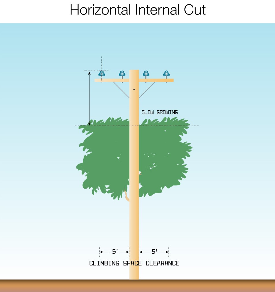horizontal internal cut