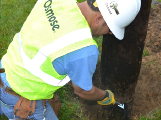 IID launches wood pole inspection effort
